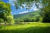letni krajobraz z rzeki i błękitne niebo