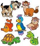 Kolekcja bajek dla zwierząt