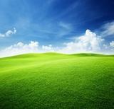 zielone pole i błękitne niebo