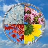 cztery pory roku na tle nieba