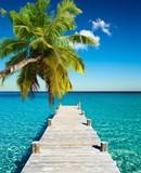 plażowy kokos