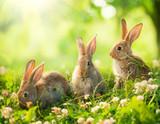 Króliki. Sztuka projektowania Cute Little Easter Bunnies na łące.