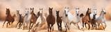 Stado koni działa na burzy piaskowej