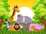 cute zwierząt dzikich zwierząt w tle lasu