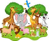 śmieszne kreskówki zwierząt