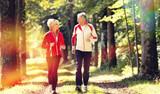 Seniorzy biegają po lesie
