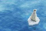 Niedźwiedź polarny / Lody topniejące