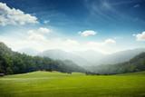 zielona łąka i wzgórza z lasem