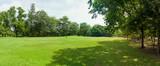 zielone pole trawy w dużym parku miejskim