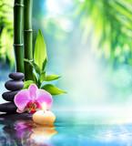 spa still life - świeca i kamień z bambusa w naturze na wodzie