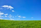 Użytki zielone i błękitne niebo