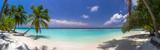 Plażowa panorama przy Maldives z niebieskim niebem, drzewkami palmowymi i turquoi