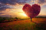 Czerwone serce w kształcie drzewa
