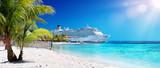 Rejs na Karaiby z palmą na plaży koralowej