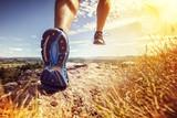 Zdrowy bieg szlaku