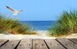 Morze Bałtyckie plaża z drewnianym molo, wydmami i seagull