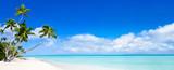 Panorama Beach z niebieską wodą i palmy