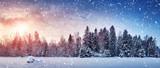 Piękny drzewo w zima krajobrazie w opóźnionym wieczór w opadzie śniegu