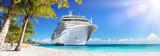 Rejs na Karaiby z palmami - Tropical Beach Holiday