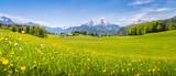 Idylliczny krajobraz w Alpach z kwitnących łąk w lecie