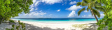 wspaniała panorama piasku, morza i palm