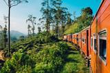 Najlepsza podróż pociągiem na Sri Lance