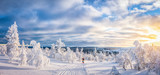 Narciarstwo biegowe w skandynawskiej winter wonderland o zachodzie słońca
