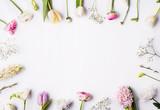 Kwiaty na białym tle.