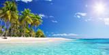 Palm Beach W Tropical Paradise - Wyspa Guadalupe - Karaiby