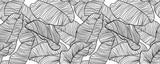 Wzór, ręcznie rysowane konspektu czarny atrament liści bananowca na białym tle