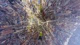 Drone helikoptera strzał. Fotografia lotnicza nowoczesnego miasta nad obszarem, dużym skrzyżowaniem, wieżowcami, parkiem i drogami. Panoramiczne miasto strzał z góry