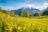Idylliczna halna sceneria w Alps z kwitnącymi łąkami w wiośnie