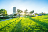 city skyline with green lawn