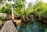 Tha Pom Klong Song Nam - Krabi Thailand