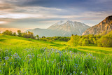 Colorful landscape in the Wasatch Mountains, Heber Valley, Utah, USA.