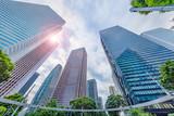 曇り空の新宿高層ビル群と新緑の木