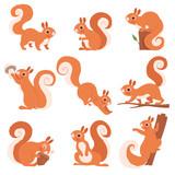 Cartoon squirrel. Funny forest wild animals running standing and jumping vector squirrel clip art collection. Squirrel wild, wildlife animal mammal illustration