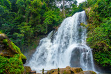 The the grand waterfall in the nature park with the greenery trees and forest in the nice day.