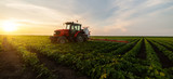 Tractor spraying soybean field in sunset