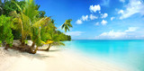 Beautiful beach with white sand, turquoise ocean, blue sky with clouds and palm tree over the water on a Sunny day. Maldives, perfect tropical landscape, wide format.