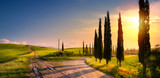 art spring countryside landscape with beautiful farmland and dirt road over sunrise sky