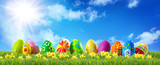 Colorful Easter eggs on green grass with spring flowers