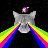 Contemporary art collage, modern design. Party mood. Head of cat with rainbow colorful flood from eyeglasses.